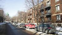 Magnificent apartment close to McGill University, Downtown