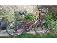 Ladies Diamondback mountain bike
