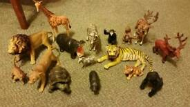 Early learning centre animals