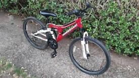 Male/female Bike