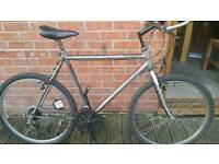 "Gents 22"" frame mountain bike. Fully serviced at kesgrave mobile cycle repairs."