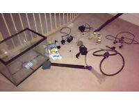 24 litre fish tank setup with accessories