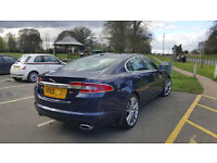 Jaguar XF Sport Premium Lux pack 3 litre diesel Immaculate condition REDUCED £1000!!