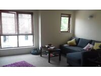 Spacious modern 2 bed appartment on Brookhill Avenue