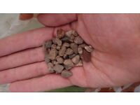 Loose Pea Chippings for Garden/Patio
