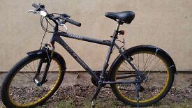 Tourismo Bike