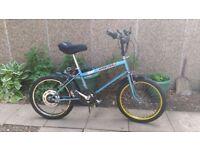 Raleigh Grifter Bike 1978