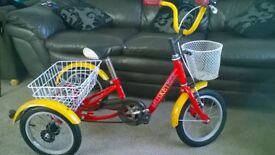 Mission Musketeer childs trike