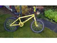 BMX Bicycle from Evans Cycles in Braehead
