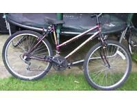 Classic Woman's/girl's bike