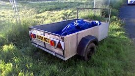 Box trailer with tailgate