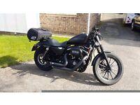 Harley Davidson 883N Iron Motorbike