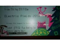 Electric fields weekend ticket with parking and camping