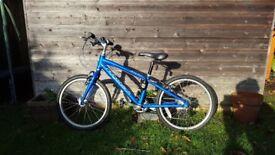 Bike Ridgeback Dimension