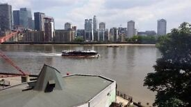 Stunning 2 bedrooms flat to rent with direct river view