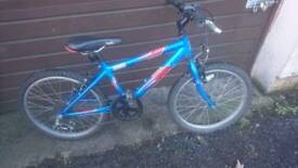 RALEIGH KOBO 20, BOYS MOUNTAIN BIKE, 11 INCH FRAME, 20 INCH WHEEL'S, 6 GEARS, VGC