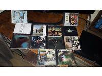 12 CDS 4 SALE