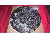 """Fleetwood Mac Big Love 12"""" Picture Disc"""