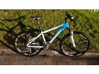 Focus Black Forest Women's mountain bike