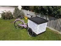 Ice Cream / Trade Bike