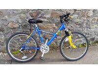 Peugeot mountain bike with comfort saddle and bike lock