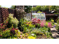 Garden Designer- specializing in low maintenance, attractive urban gardens.