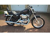 Immaculate, Loved Harley Davidson 883 with Full Harley Service History, Beautiful Bike