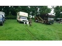 3.5T LDV convoy horse box