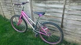 Girl bike for teenager