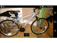 ladies mountain bike £40 excellent bike