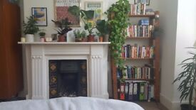 Beautiful Large Double in Victorian Flat 740pcm- AVAILABLE IMMEDIATELY