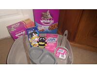 Cat Kitten Pack Food Treats Collar