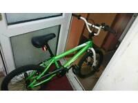 Zinc Bmx green + white