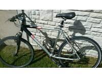 "Bike cycle Scott vail 19"" frame"