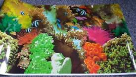 Fishtank Aquarium backgrounds