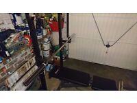 Bodymax CF325 FID Utility Bench / Weight Bench