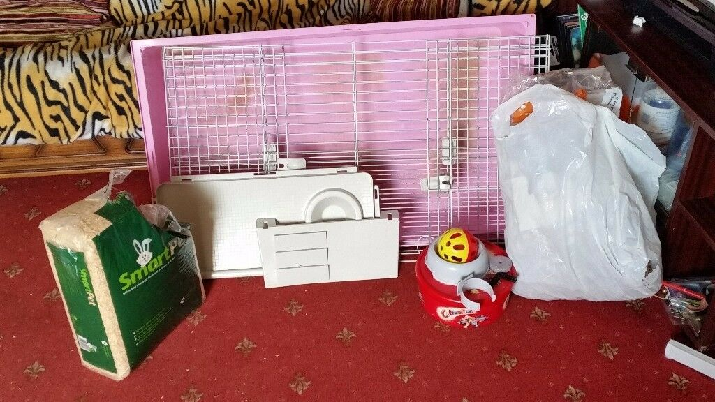 LARGE GUINEA PIG CAGE AND ACCESSORIES