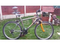 adult, VIRAGE MACH 2 mountain bike. serviced, ready to ride.