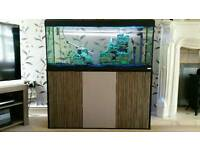 4ft tank and cabinet combi