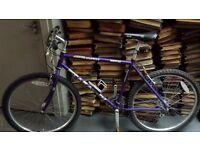 Saracen mountain bike ltd edition
