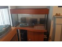 Fish tank on pine effect wooden stand