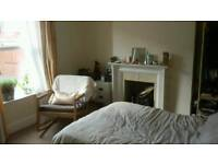 Central exeter. Good sized plesant room with en suite