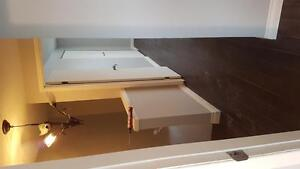 Renovated 3 or 4 bedroom townhouse London Ontario image 1