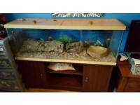 Viv for sale with stand