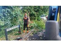M.V.L tree service and fencing