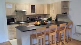 Large 1 Bed Flat in Putney/ Wandsworth