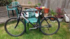 Men's Bicycle - Used
