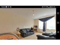 Double room for rent in a spacious vegetarian flat
