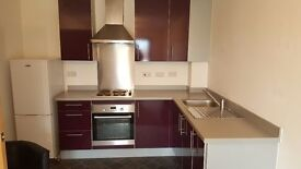 1 bed apartment- furnished - to let nearly NEW BUILT