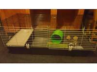 Large guinea pig cage, carrier and accessories